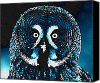 Colette Canvas Prints - Snow Owl Canvas Print by Colette Hera  Guggenheim