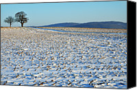 Ile De France Canvas Prints - Snowy Fields In Winter Canvas Print by Sami Sarkis