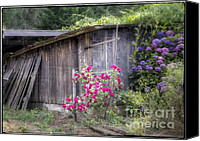 Old Wood Building Canvas Prints - Somewhere near Geyserville CA Canvas Print by Joan Carroll