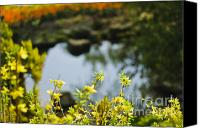 Royal Botanical Gardens Canvas Prints - Spring Canvas Print by Christine Kapler