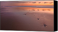 Morning Canvas Prints - Steppin Stone Canvas Print by Bill  Wakeley