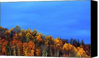Approaching Canvas Prints - Stormy Sky Last Fall Color Canvas Print by Thomas R Fletcher