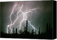 "\""striking Photography\\\"" Canvas Prints - Striking Photography Canvas Print by James Bo Insogna"