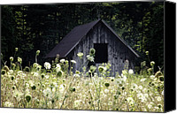 Barns Canvas Prints - Summer Barn Canvas Print by Rob Travis