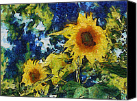 Texture Floral Canvas Prints - Sunflowers Canvas Print by Michelle Calkins