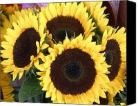Tom Romeo Photo Canvas Prints - Sunflowers Canvas Print by Tom Romeo