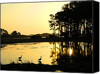 Assateague Canvas Prints - Sunrise Over Assateague Canvas Print by Steven Ainsworth