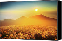 Mountain Scene Canvas Prints - Sunset And Silver Grass Blossoms Canvas Print by Joyoyo Chen