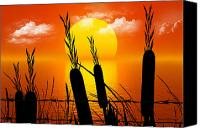 Barbed Wire Fence Canvas Prints - Sunset Lake Canvas Print by Robert Orinski