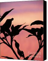 Black Rose Canvas Prints - Sunset Silhouette Canvas Print by Rose  Hill