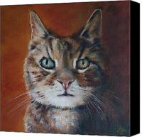 Tabby  Painting Canvas Prints - Tabby Cat Canvas Print by Julie Dalton Gourgues