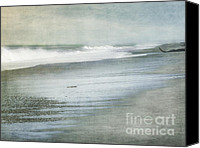 Driftwood Canvas Prints - The Beach Canvas Print by Linde Townsend