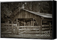 Old Wood Building Canvas Prints - The last barn Canvas Print by Joan Carroll
