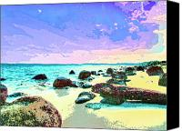 Kaanapali Mixed Media Canvas Prints - The Morning After Canvas Print by Dominic Piperata