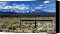 Color Photography Canvas Prints - Three Sisters Canvas Print by Sharon Elliott