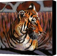 Tiger Canvas Prints - Tiger Canvas Print by John Lautermilch