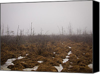 Tophet Canvas Prints - Tophet Swamp Canvas Print by John Poltrack