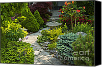 Walkway Canvas Prints - Tranquil garden  Canvas Print by Elena Elisseeva