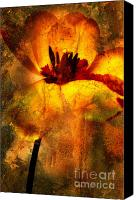 Ornamental Digital Art Canvas Prints - Tulip Canvas Print by Bernard Jaubert