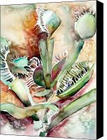 Trap Canvas Prints - Venus Fly Trap Canvas Print by Mindy Newman