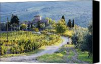 Olive Canvas Prints - Vineyards and Farmhouse Canvas Print by Jeremy Woodhouse