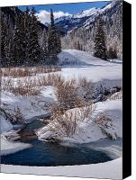 Evergreens Canvas Prints - Wasatch Mountains in Winter Canvas Print by Utah Images