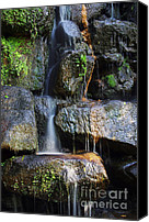 Brook Canvas Prints - Waterfall Canvas Print by Carlos Caetano