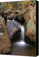 Autumn Canvas Prints - Waterfall In Acadia National Park Canvas Print by Juergen Roth