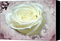 Lovely Looking Flower Canvas Prints - Wedding Rose Collection  Canvas Print by Debra     Vatalaro