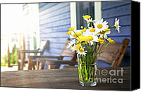 White Daisy Canvas Prints - Wildflowers bouquet at cottage Canvas Print by Elena Elisseeva