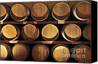 Winery Canvas Prints - Wine barrels Canvas Print by Elena Elisseeva