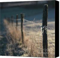 Wooden Post Canvas Prints - Wooden posts Canvas Print by Bernard Jaubert