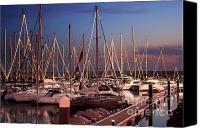 Lined Canvas Prints - Yacht Marina Canvas Print by Carlos Caetano