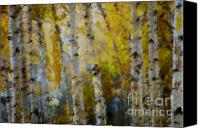 Marilyn Sholin Canvas Prints - Yellow Aspens Canvas Print by Marilyn Sholin