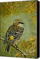 Harbor Art Painting Canvas Prints - Yellow-rumped Warbler Canvas Print by David Tabor