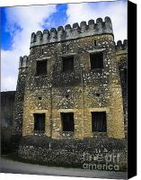 Allah Canvas Prints - Zanzibar Old Fort Canvas Print by Darcy Michaelchuk