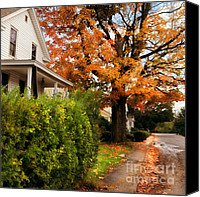 Yellow Trees Canvas Prints - Autumn Series Canvas Print by HD Connelly