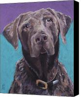 Pet Portrait Pastels Canvas Prints - 100 lbs. of Chocolate Love Canvas Print by Pat Saunders-White