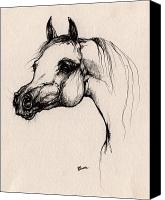 Arabian Horse Drawings Canvas Prints - The Arabian Horse Canvas Print by Angel  Tarantella