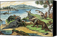 Schubert Canvas Prints - 1888 Colour Litho Of Jurassic Dinosaurs Canvas Print by Paul D Stewart
