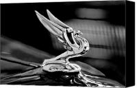 Antique Automobiles Canvas Prints - 1935 Chevrolet Hood Ornament 3 Canvas Print by Jill Reger