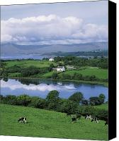 Corks Canvas Prints - Bantry Bay, Co Cork, Ireland Canvas Print by The Irish Image Collection 