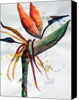 Flora Drawings Canvas Prints - Bird of Paradise Canvas Print by Mindy Newman