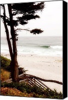 Northern California Canvas Prints - Carmel Treat Canvas Print by Ron Regalado