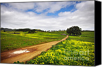 Puddle Canvas Prints - Countryside landscape Canvas Print by Carlos Caetano