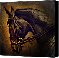 Mare Digital Art Canvas Prints - Cover Girl Canvas Print by Lyndsey Warren