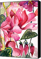 Flora Drawings Canvas Prints - Cyclamen Canvas Print by Mindy Newman