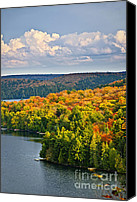 Forest Canvas Prints - Fall forest and lake Canvas Print by Elena Elisseeva