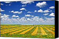 Hay Canvas Prints - Farm field at harvest in Saskatchewan Canvas Print by Elena Elisseeva