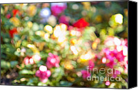 Impressionism Photo Canvas Prints - Flower garden in sunshine Canvas Print by Elena Elisseeva